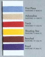 Triumph Color Scheme